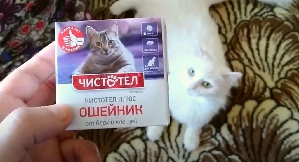 """Ошейник для котят от блох """"Чистотел Плюс"""""""